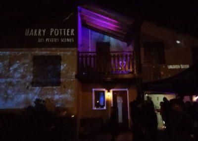 harry-potter-maison